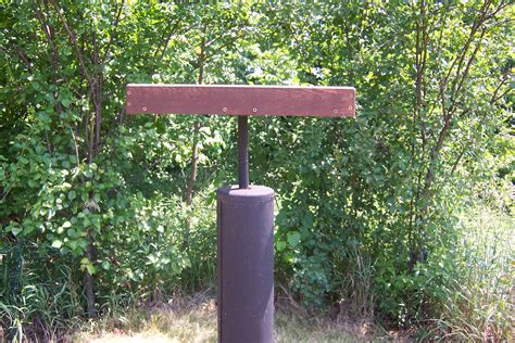 bird feeder pole birdfeeding 101 backyard bird lover