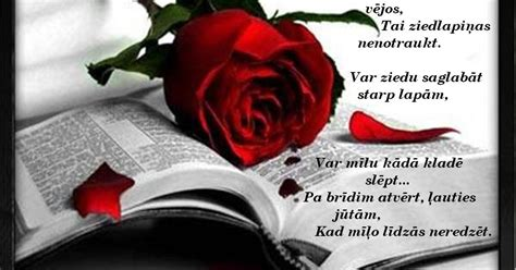 Aijassmaids - dzeja katrai gaumei...: STARP LAPĀM...