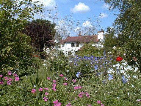 White Cottage (cranesbill Nursery
