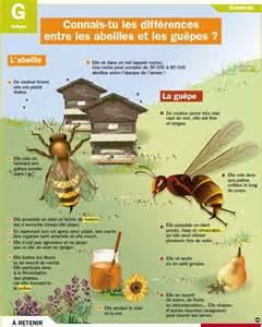 les 25 meilleures id 233 es concernant abeilles sur