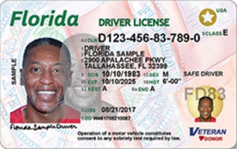 developmentally disabled drivers excluded  florida id