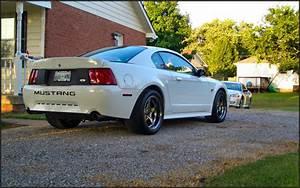 WNRacing 2001 Ford Mustang Specs, Photos, Modification Info at CarDomain