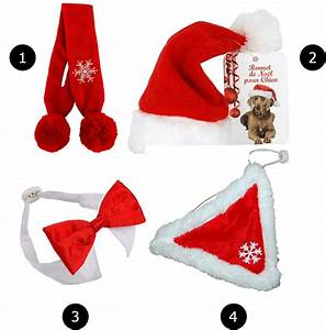 Idee Cadeau Noel : 10 cadeaux de no l pour chiens chats by maurice mauricette jamais sans maurice ~ Medecine-chirurgie-esthetiques.com Avis de Voitures