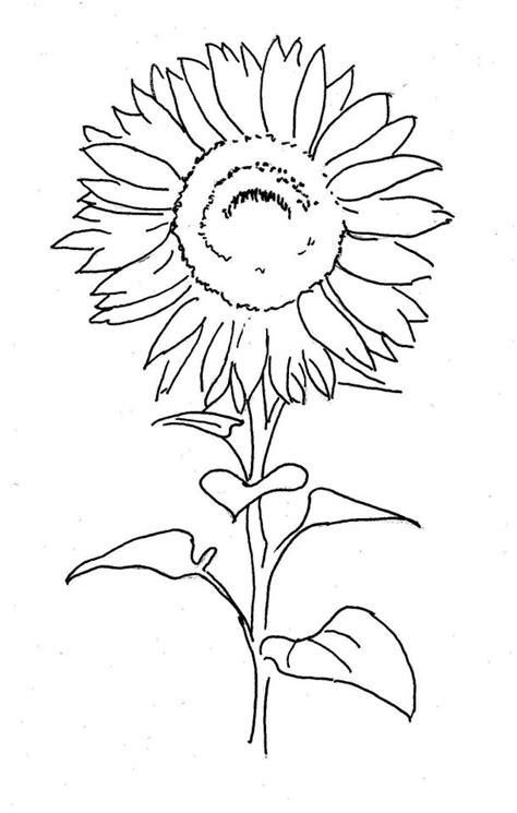 sonnenblume lernzentrum  killesberg