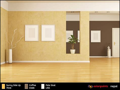 asian paints wall colour nisartmacka