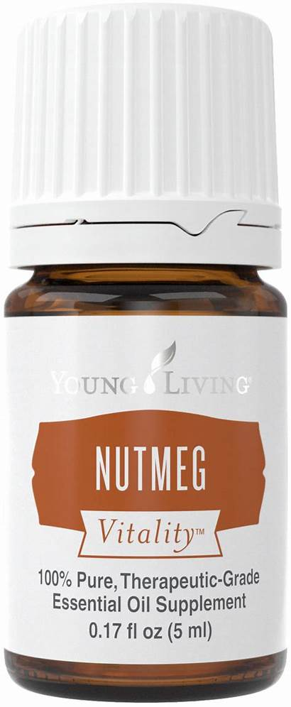 Living Young Recipe Oils Essential Nutmeg Wassail