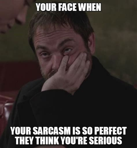 Sarcastic Face Meme - when people don t get my sarcasm the meta picture