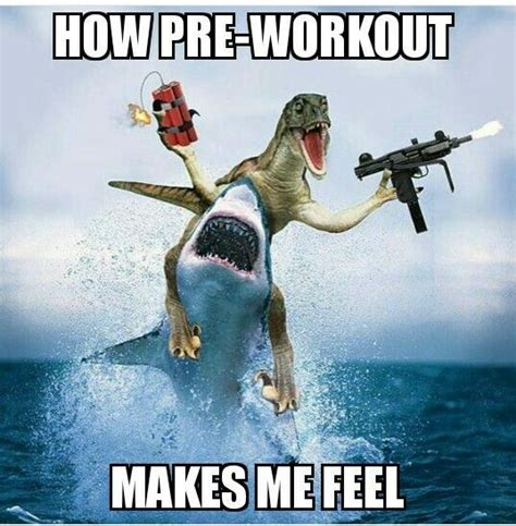 Pre Workout Meme - pre workout memes www pixshark com images galleries with a bite