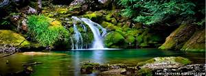 My India FB Covers: Waterfall and green nature- Nature FB ...