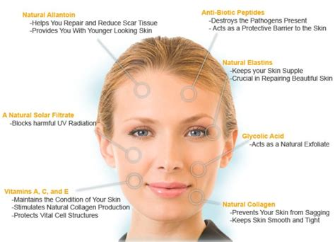 Best skin care to prevent aging