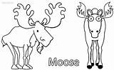 Moose Elk Bull Coloring Pages Christmas Cool2bkids Printable Sheets Getcolorings sketch template