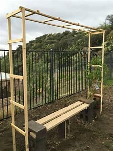 Trellis for my grape vine simple diy under $10 Garden