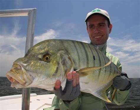 australian flyfishing outfitters hervey bay
