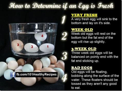 Bad Eggs Do They Float Or Sink by How To Tell If An Egg Is Fresh Lifeprotips