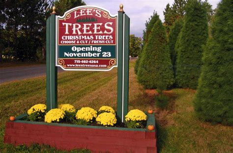 catchy collections of christmas tree farms in northern