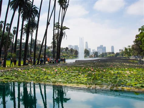 echo park  silver lake february  sales report
