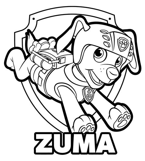 Coloring Zuma by Zuma Paw Patrol Coloring Lesson Coloring Page