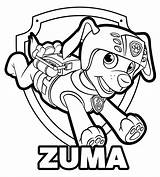 Coloring Paw Patrol Zuma Getcoloringpages Pages sketch template