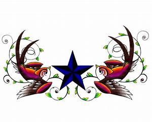 Swallow's and Star by ltatt2 on DeviantArt