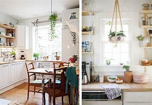 Suspension Plante Interieur : la fabrique d co des plantes dans la cuisine ~ Preciouscoupons.com Idées de Décoration