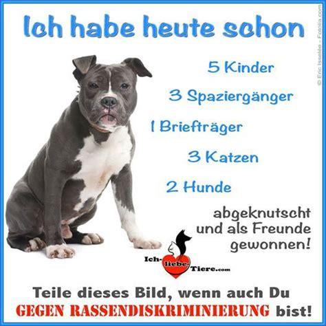 Glueckliche Haustiere Sauberkeit Und Erziehung by Pin Auf Quot One Second Ein Augenblick Un
