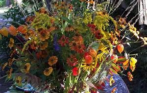 Winterharte Pflanzen Liste : schnittblumen im garten f r blumenstr u e selber pflanzen winterhart ~ Eleganceandgraceweddings.com Haus und Dekorationen