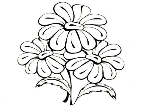 Vorlagen Zum Ausmalen Malvorlagen Blumen Ausmalbilder 1
