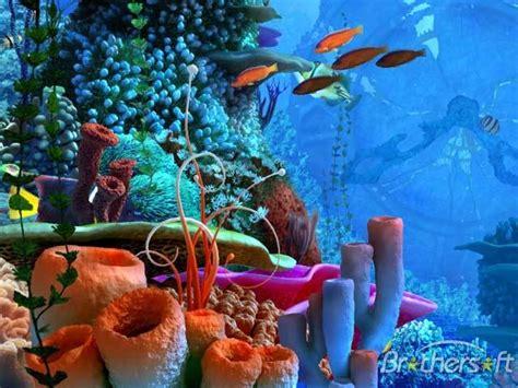 Foto Pemandangan Indah Bawah Laut