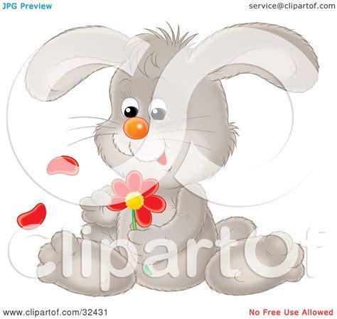 clipart illustration   cute gray bunny rabbit sitting