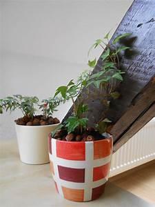Pflanzen Im Schlafzimmer : pflanzen im schlafzimmer so hast du einen gesunden schlaf ~ Indierocktalk.com Haus und Dekorationen