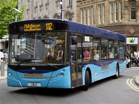 bluebird bus and coach wikipedia