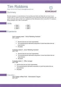 curriculum vitae exle pdf download resume 2016 format