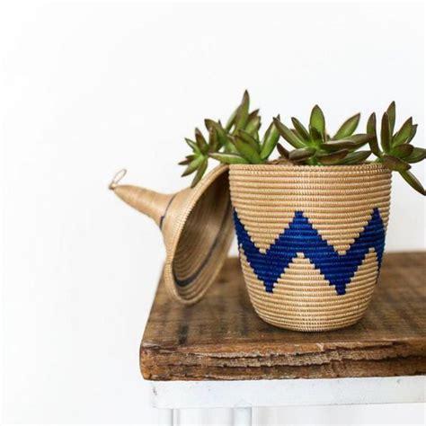 plantes dans la chambre décorez avec les plantes grasses d 39 intérieur archzine fr