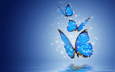 butterflies desktop wallpaper gallery