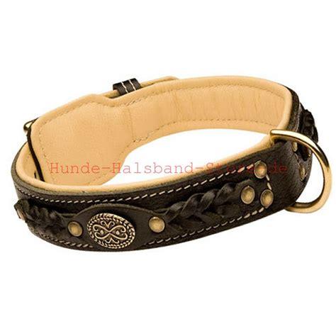 amerikanische bulldogge halsband geflochten