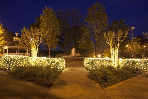 how to measure netted christmas lights shrubs net lights installation guide