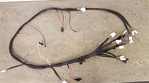 Ccm 604 Main Wiring Harness