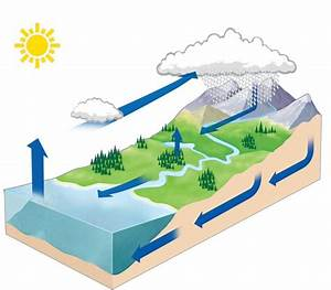 349 Best Images About Water Cycle  U2665 Projects  U0026 Ideas For Kids On Pinterest
