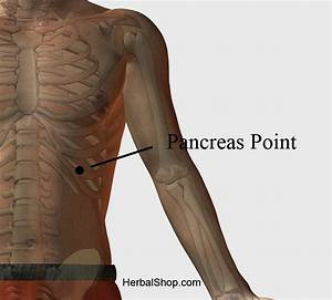Chinese Foot Chart Acupressure Point Pancreas Point Herbalshop