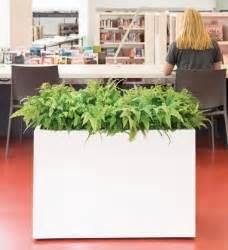 Pflanzkübel Raumteiler Fiberglas : pflanzgef e im greenbop online shop kaufen seite 4 ~ Markanthonyermac.com Haus und Dekorationen