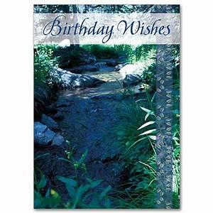Birthday, Wishes, Birthday, Card