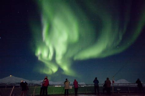 northern lights cruise northern lights at sea cruises fjord travel