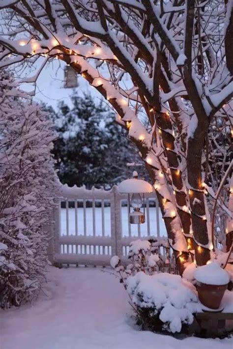Gartendeko Weihnachten Bilder by B 228 Ume Mit Lichterketten Schm 252 Cken Gartendeko Zu