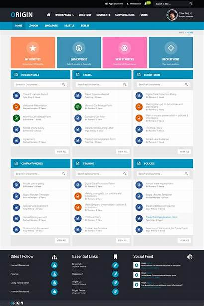 Intranet Examples Sharepoint Simple Layout Web Designs