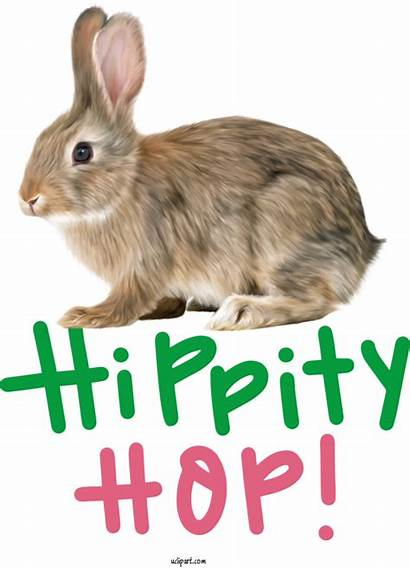Holidays Rabbit Cottontail Easter Appalachian England Whiskers