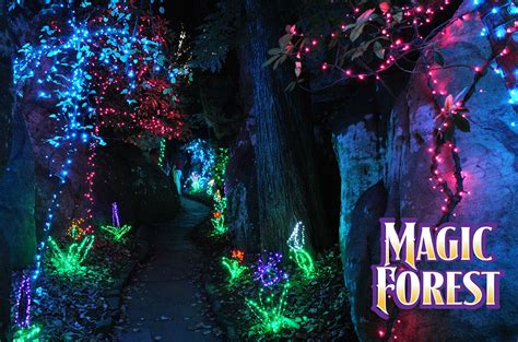 Enchanted Garden of Lights   Rock City
