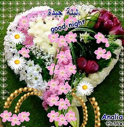 Night Flowers Flower Gifs Gfycat