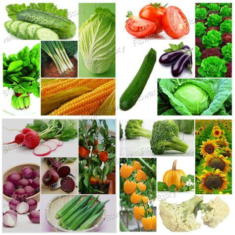 healthy asian garden aliexpress buy 4500 varieties heirloom vegetable and