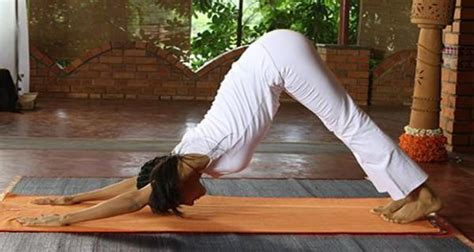 yoga inspired sex positions  rock  world