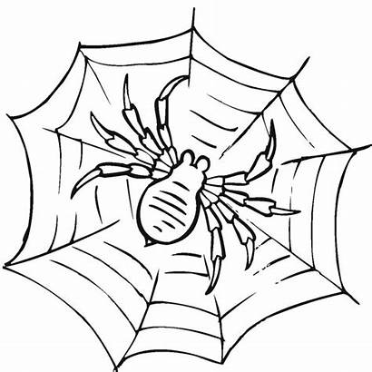 Spider Coloring Web Pages Awesome Iron Line